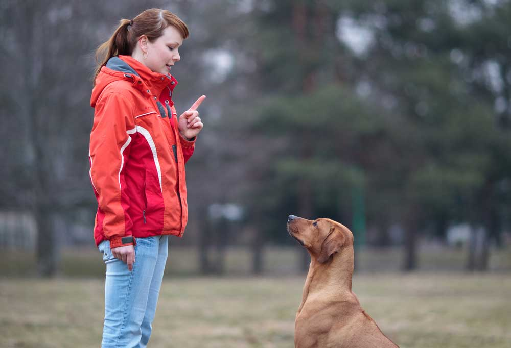 Woman in orange and red jacket holding one finger up telling the dog to wait