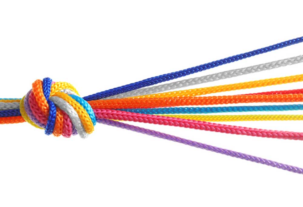 9 strands of colorful rope tied in a knot on one end and fanned out on the other