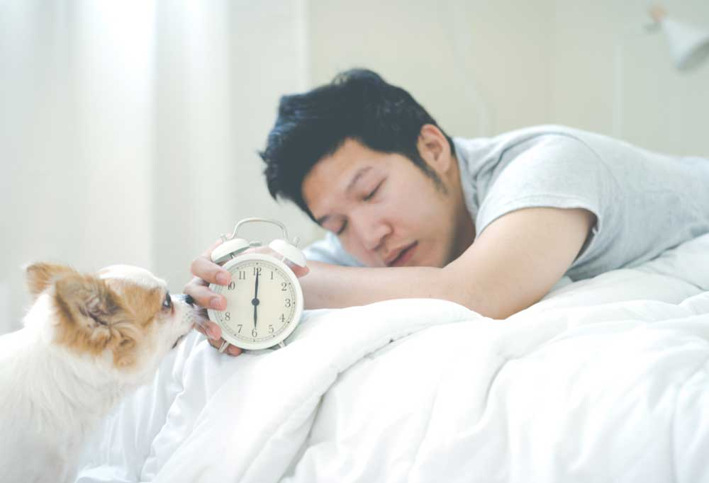 Man in bed holding out alarm clock to show dog it is 6 am