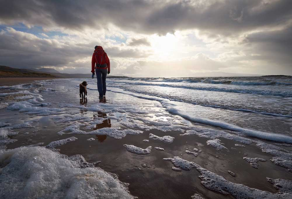 Dog walking beside hiker on the beach