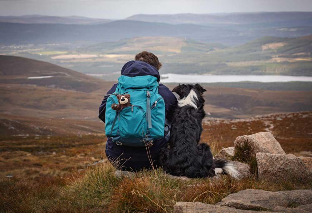 Dog sitting on a boulder next to a hiker wearing a blue backpack on a hillside.