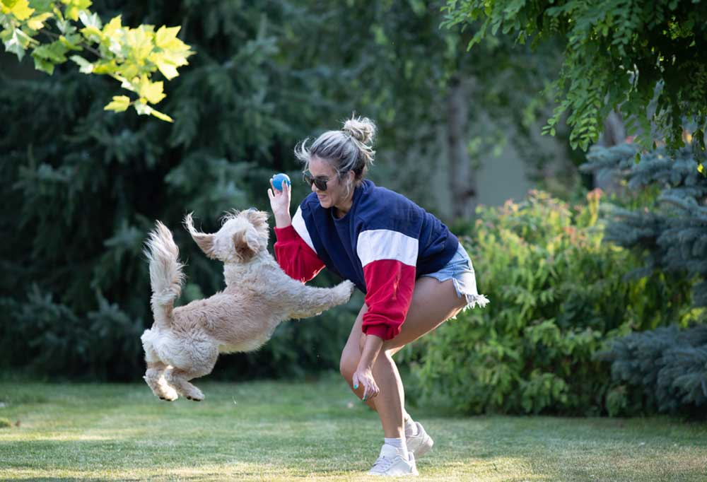 Woman outdoors with dog, dog jumping up at blue ball held in her hand