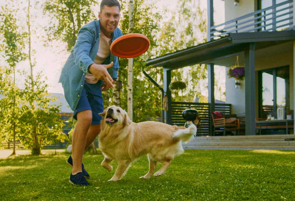 Man throwing Frisbee for golden retriever to fetch