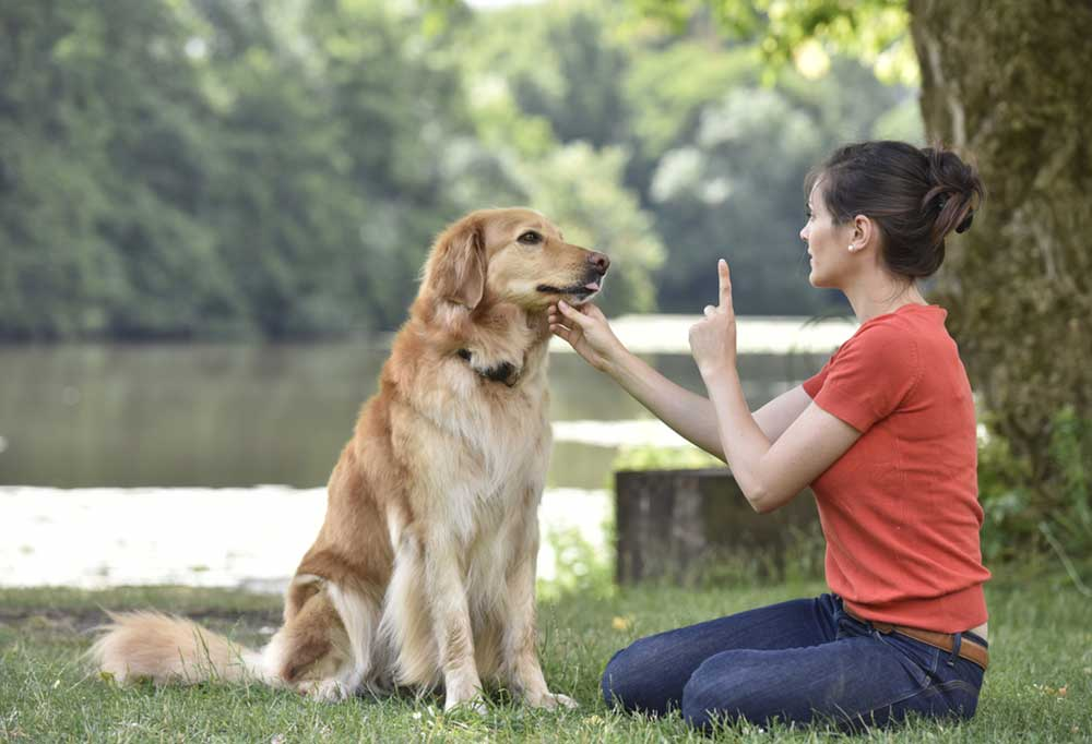 Woman in a red shirt kneeling at a rivers edge in front of a golden retriever with one finger held up while holding the dog's chin with the other hand.