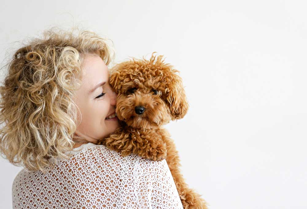 Woman with curly blond hair hugging a poodle mix on a white background