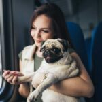 Woman holding a pug up to the window of a train looking out.