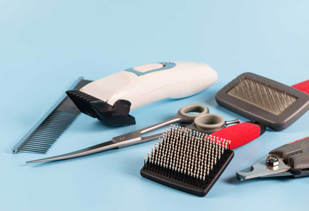 Pet groomers tools on a blue background.