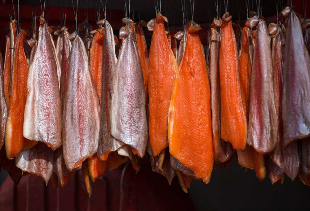 salmon filets  hanging from chords in a smoker