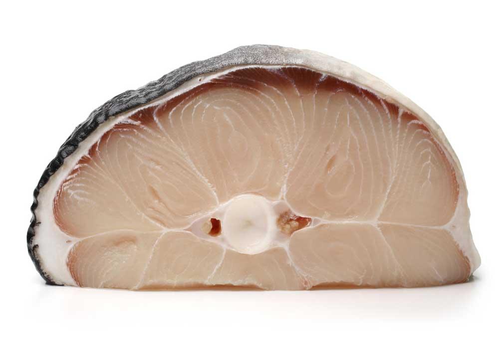 Shark steak on a white background.