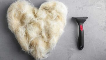 Pile of dog hair in the shape of a heart with a dog comb next to it